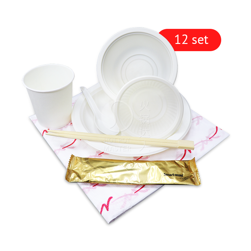 Disposable Tableware (12 set)